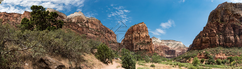 Zion National_2907-Pano