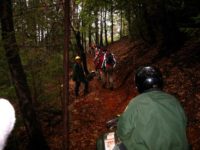 gt trail clearing