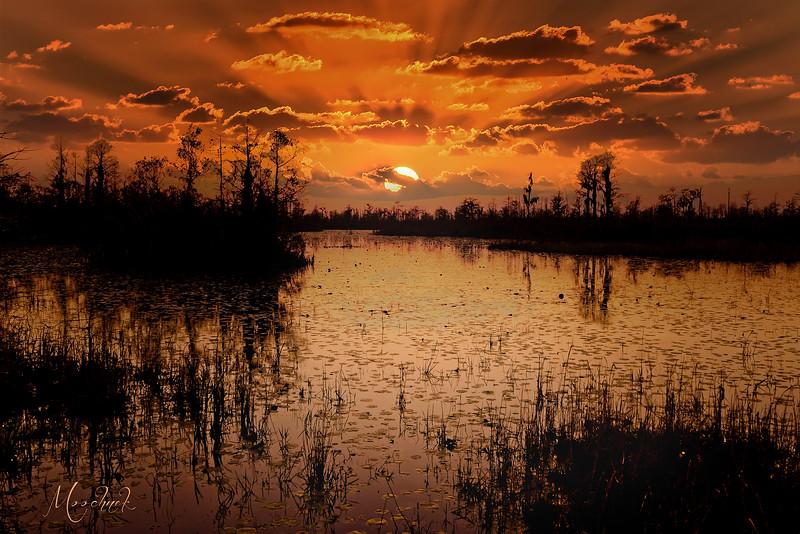Sunset_DSC2842 copy copy-web1135x1700U100.jpg