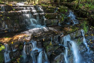 Dogwood Canyon Scenic