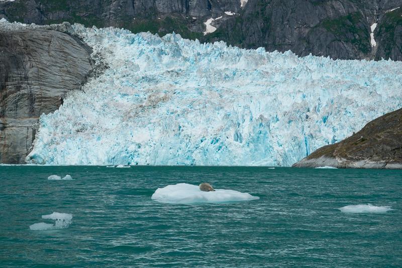 Petersberg Alaska 2019-25.jpg