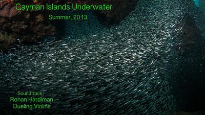Cayman Islands Underwater_Summer, 2013
