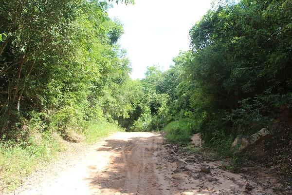 2013 - Paraguay - Nature