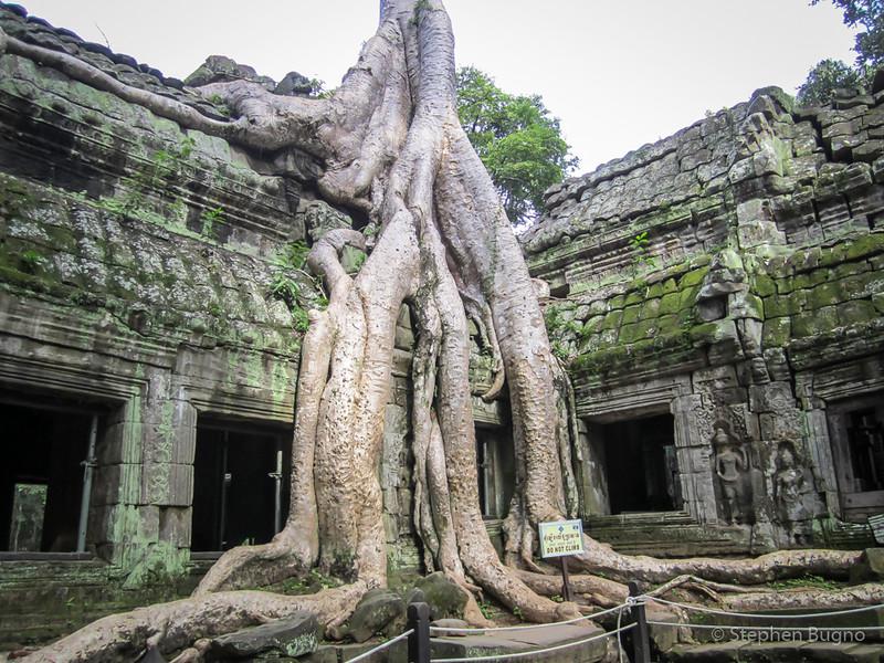 Angkor Day Two-5065.jpg