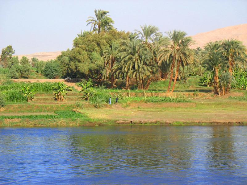 Egypt-436.jpg