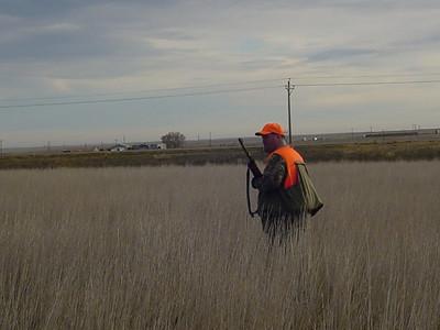 Pheasant Hunt 2006
