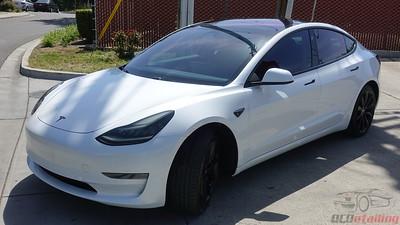 Tesla Model 3 - Pearl White Multi-Coat 4