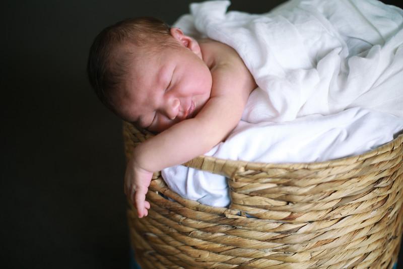 Pippa 8.jpg