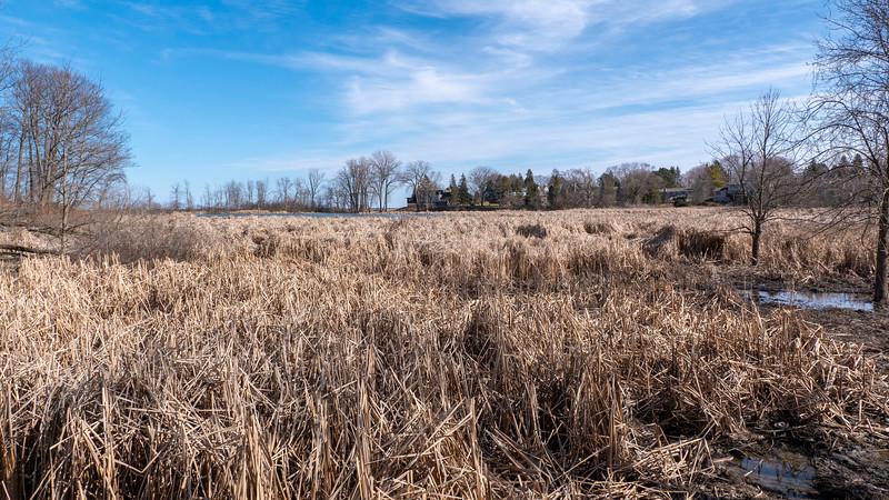 Canada-Ontario-Mississauga-Rattray-Marsh-10.jpg