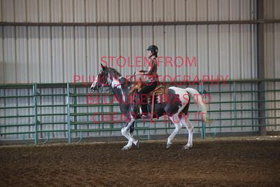 Class 2 Western Saddle Horse Pleasure - 17 & Under