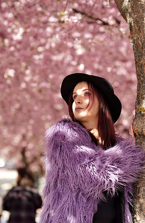Isabelle - Cherry Blossom