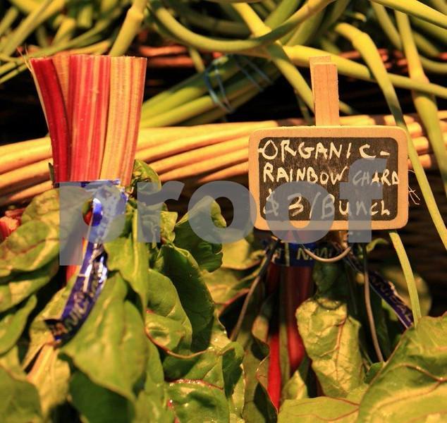 Organic rainbow chard 8618c.jpg