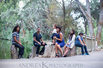 Guevara Family 2013