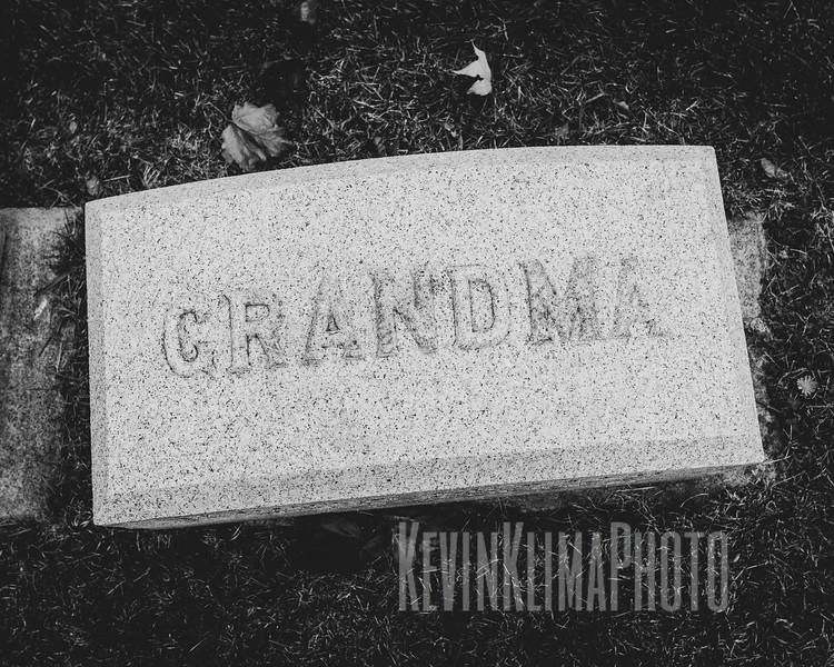 GracelandX100F-120.jpg