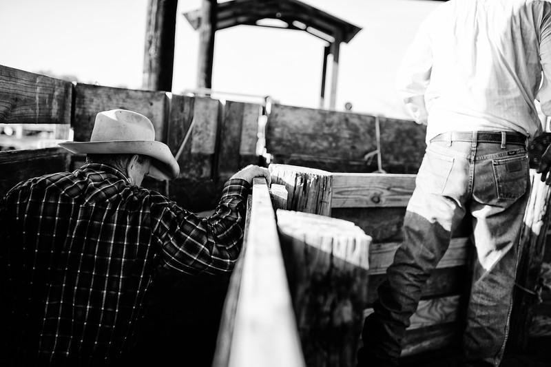 Breely Barthle Ranch B&W 3 (37 of 46).jpg