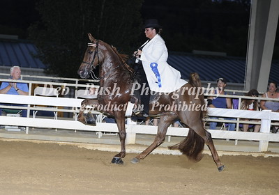 CLASS 6  AMATEUR OWNED & TRAINED