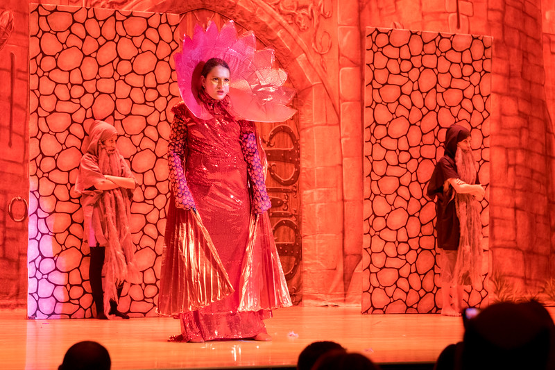 2015-03 Shrek Play 2432.jpg