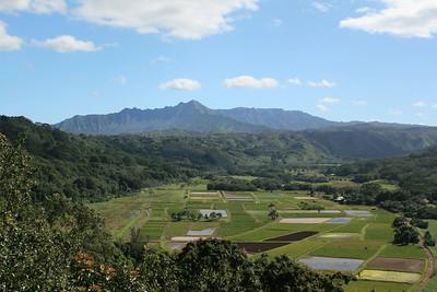 Kauai Jan 2009