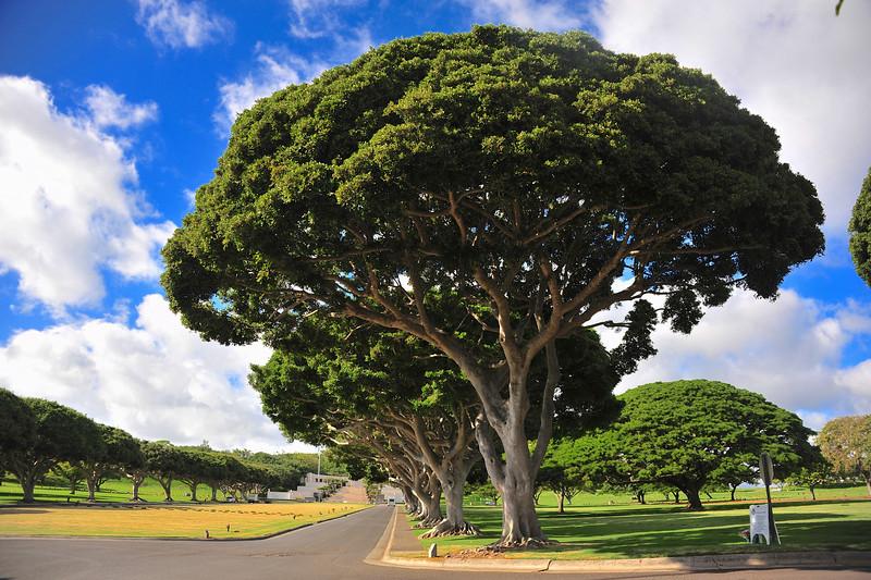 Hawaii_Pearl_Harbor_66.jpg