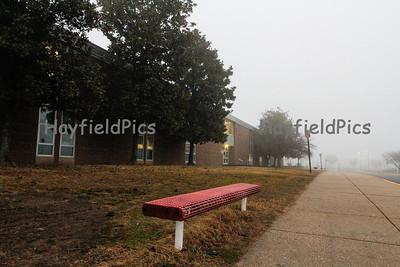 Foggy Morning 1/12/13