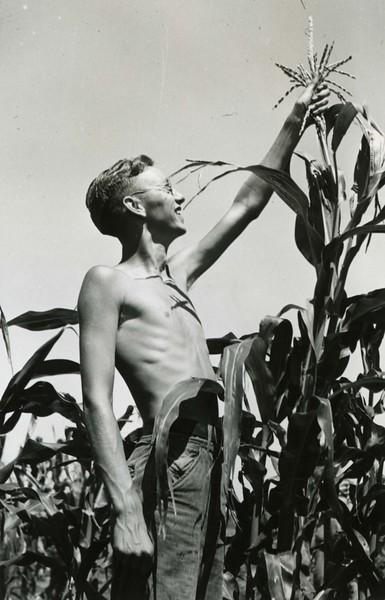 JA042.  unknown‡ with corn - 1939‡ .jpg