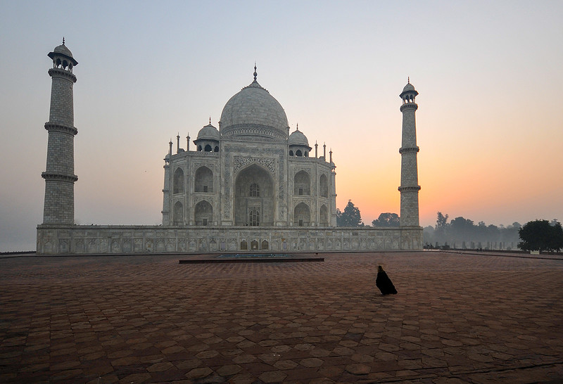 Taj Mahal Sunrise 1.jpg