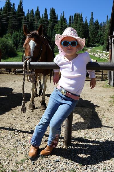 _DLH2350 Horses and Flattops.JPG