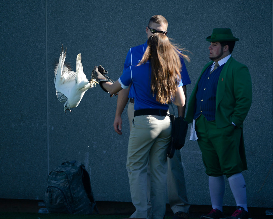 . COLORADO SPRINGS, CO - OCTOBER 26: The Notre Dame Leprechaun gets a first hand look at one of Air Force falcons before the start of the game against Air Force at Falcon Stadium Saturday afternoon, October 26, 2013. (Photo By Andy Cross/The Denver Post)