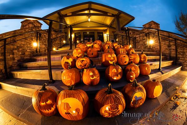 CTC Pumpkin Festival 2020