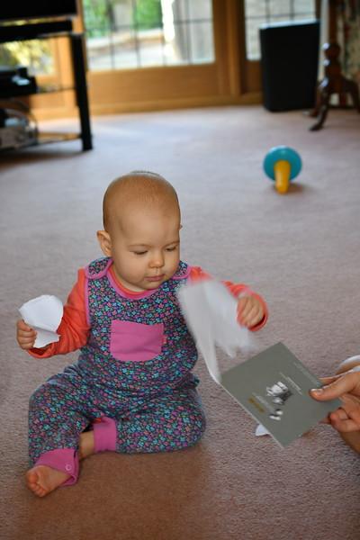 Daisy babysitting Sept 2017 008.JPG