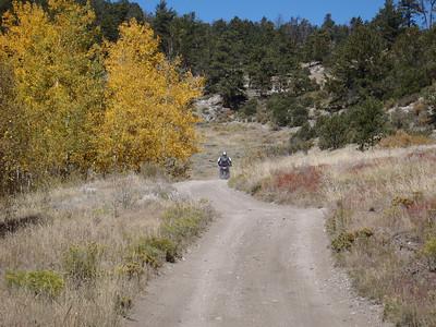 Rides 2010