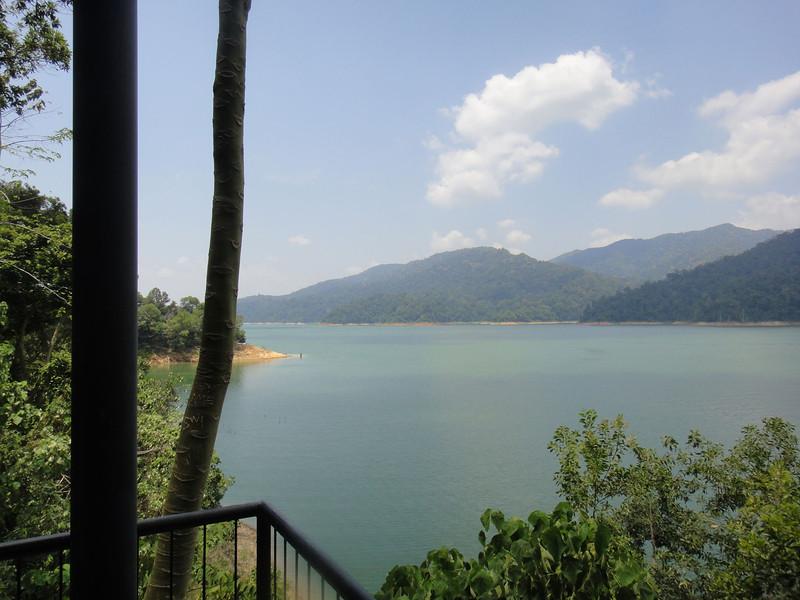 Belum Rainforest (2).JPG