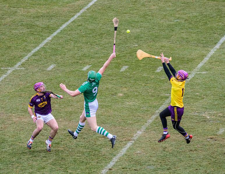 2018 Limerick vs Wexford -_8503646.jpg
