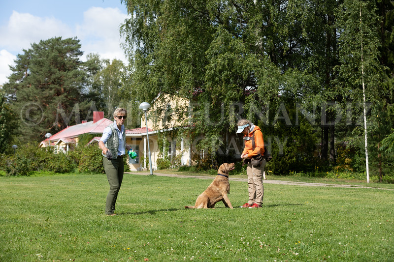 Finland July 2019-2449.jpg