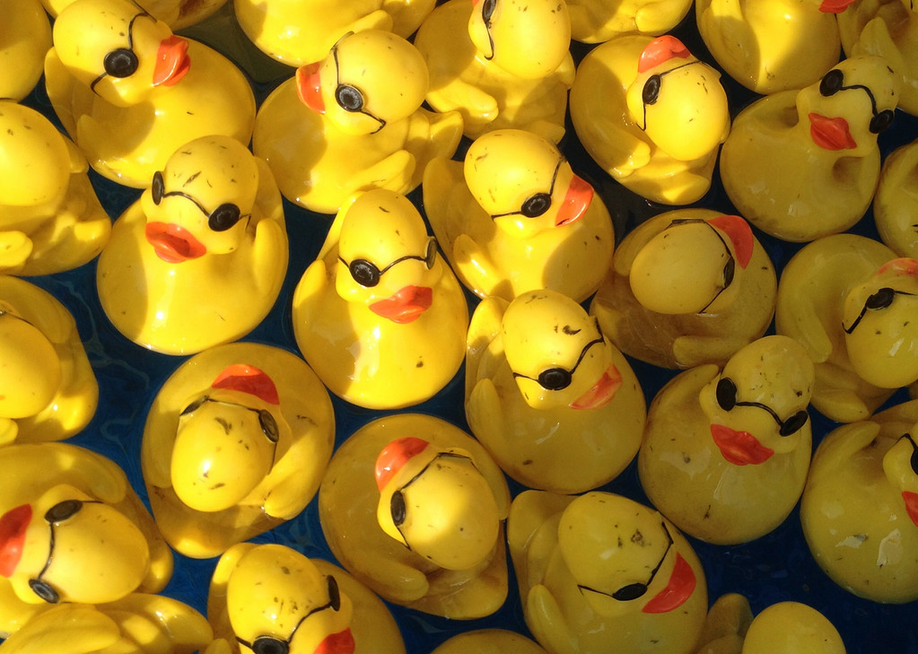 . Rubber ducks float at the duck picking  game  at the Boonville Oneida County Fair on Tuesday, July 22, 2014 in Boonville. the fair runs through Sunday, July 27, 2014.  JOHN HAEGER-ONEIDA DAILY DISPATCH @ONEIDAPHOTO ON TWITTER