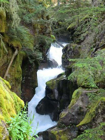 Glacier National Park 2011