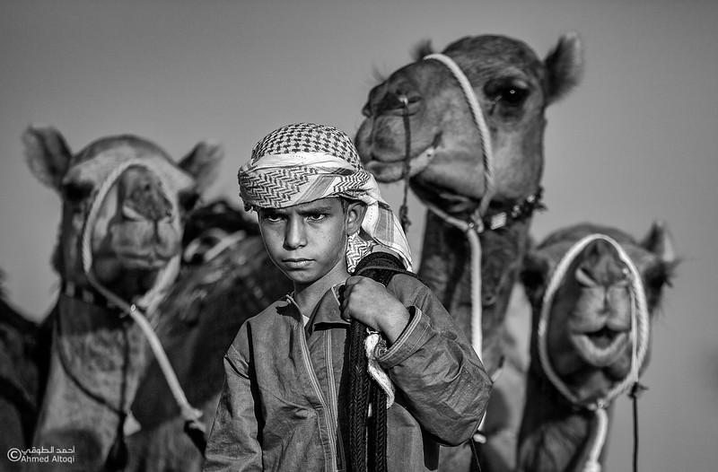 camels (26) copy2 (1)- B&W.jpg