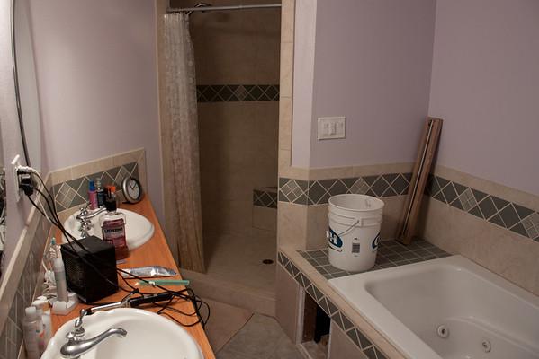 Bathroom 2012