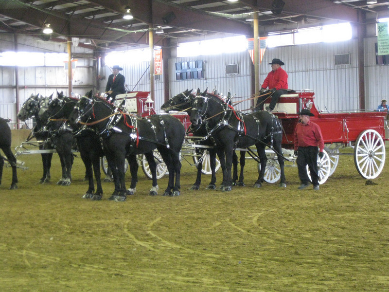 Horse and wagon competition.