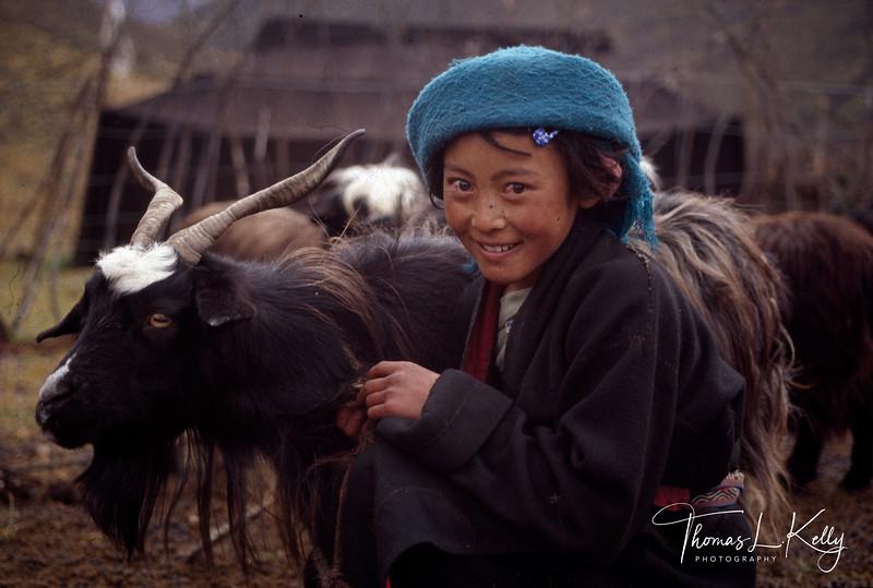 TIBETAN-NOMAD-393-TLK.jpg