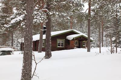 Wooden holiday hide-away in a snowy forest