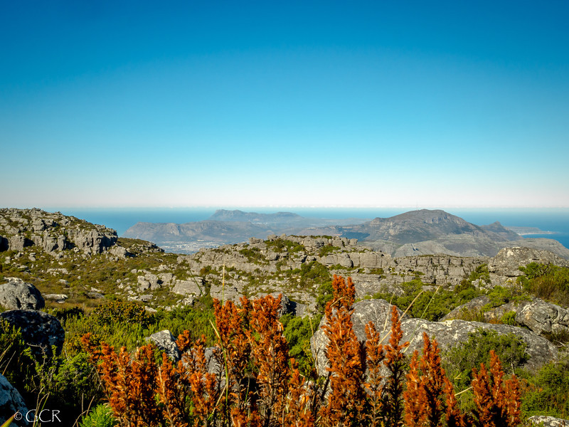 Table Mtn View (1 of 1).jpg