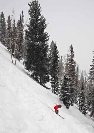 Utah Skiing: 2006