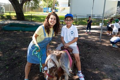 Noah's Ark and Petting Zoo