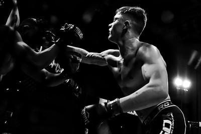 Freelance photography and cage fighting- more similar than you would think?