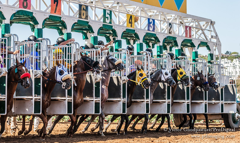 Closing Day at Del Mar