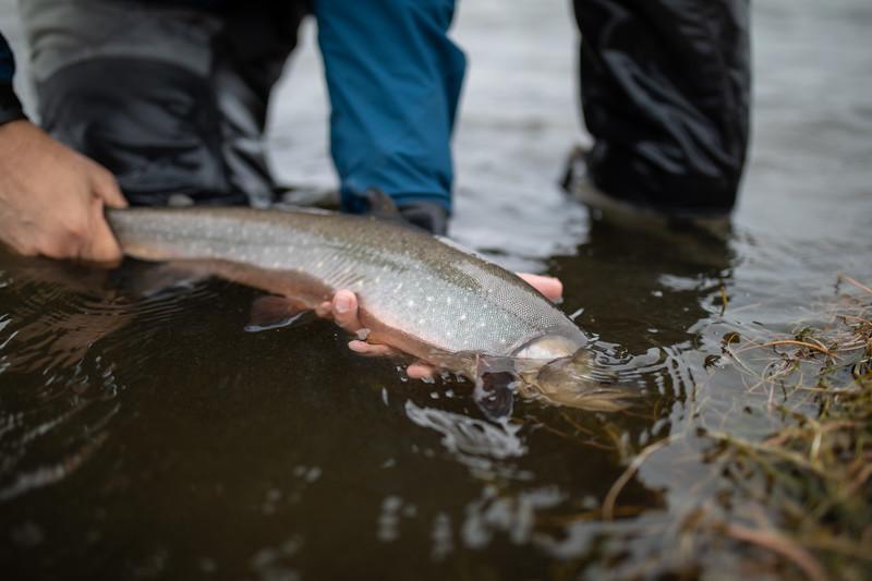 holknaicelandatlanticsalmonflyfishing.bencarmichael (92 of 343).jpg