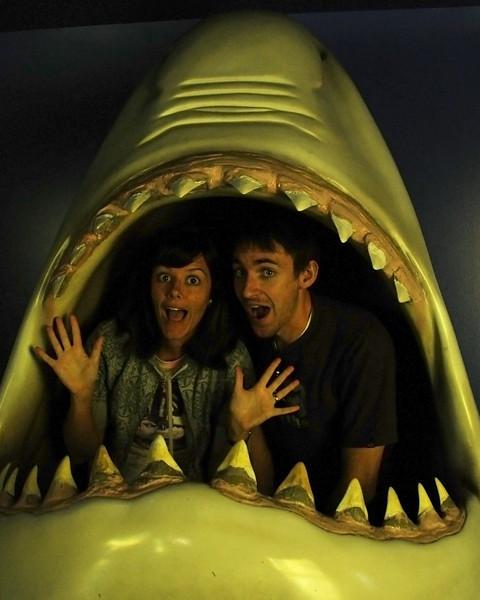me brent in shark.jpg