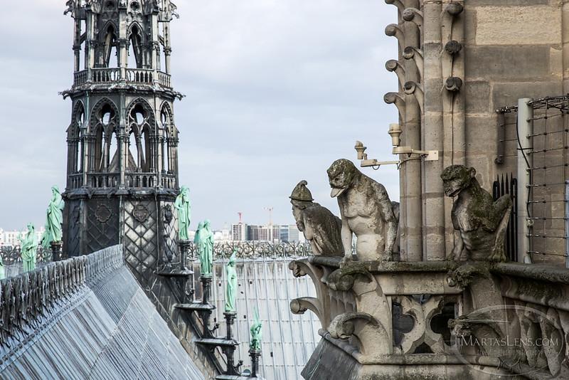 Notre Dame, Paris-23.jpg