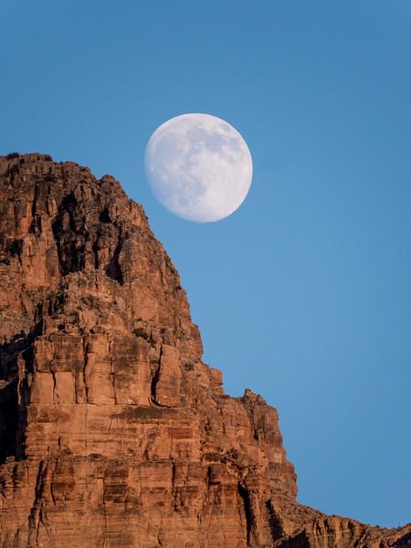 Grand Canyon-264.jpg
